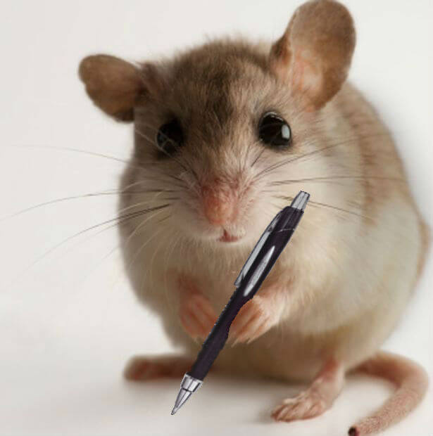 mouse-with-pen